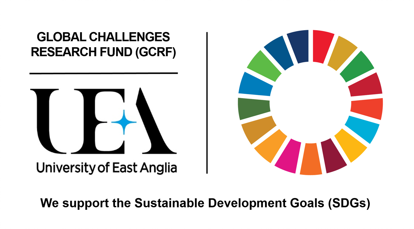 Global Challenges Research Fund (GCRF) - UEA. We support the sustainable development goals.