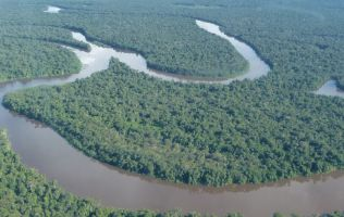 Overhunting-threatens-rainforest-aerial-view-of-river