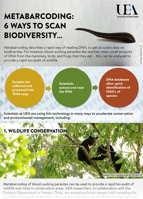 Infographic showing ways to scan biodiversity
