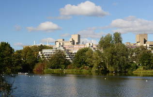 UEA broad and ziggurat